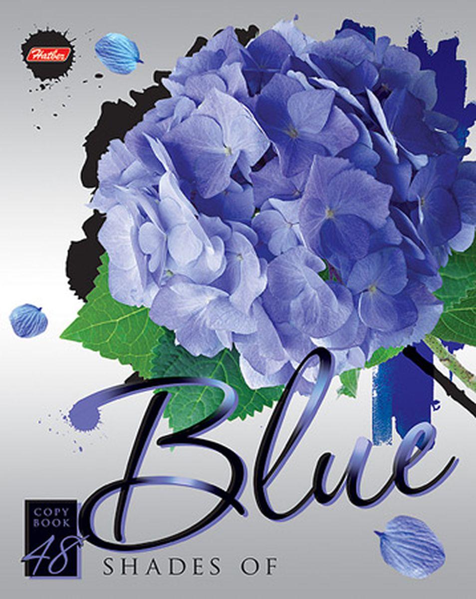 Hatber Тетрадь Blue 48 листов в клетку hatber тетрадь экстремалы бездорожья 48 листов в клетку цвет синий