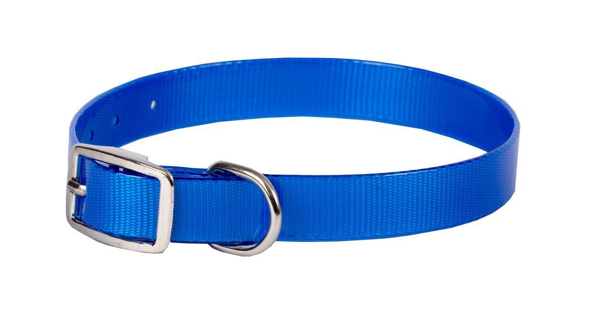 Ошейник для собак Каскад Синтетик, цвет: синий, ширина 2 см, обхват шеи 25-35 см00220351-06Ошейник для собак Каскад Синтетик изготовлен из высокотехнологичного биотана (нейлон, термопластичный полиуретан). Сверхпрочный ошейник удобен и практичен в использовании, не выгорает, устойчив к влажности, не рвется и не деформируется. Размер ошейника регулируется с помощью металлической пряжки, которая фиксируется на одном из 6 отверстий изделия. Яркий ошейник Каскад Синтетик идеально подойдет для активных собак, для прогулок на природе и охоты. Минимальный обхват шеи: 25 см. Максимальный обхват шеи: 35 см. Ширина: 2 см.