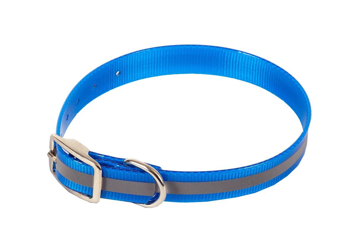 Ошейник для собак Каскад Синтетик, со светоотражающей полосой, цвет: синий, ширина 2,5 см, обхват шеи 44-56,5 см00225562-06Ошейник для собак Каскад Синтетик изготовлен из высокотехнологичного биотана (нейлон, термопластичный полиуретан). Сверхпрочный ошейник удобен и практичен в использовании, не выгорает, устойчив к влажности, не рвется и не деформируется. Изделие оснащено светоотражающей полоской. Размер ошейника регулируется с помощью металлической пряжки, которая фиксируется на одном из 6 отверстий изделия. Яркий ошейник Каскад Синтетик идеально подойдет для активных собак, для прогулок на природе и охоты в темное время суток. Минимальный обхват шеи: 44 см. Максимальный обхват шеи: 56,5 см. Ширина: 2,5 см.