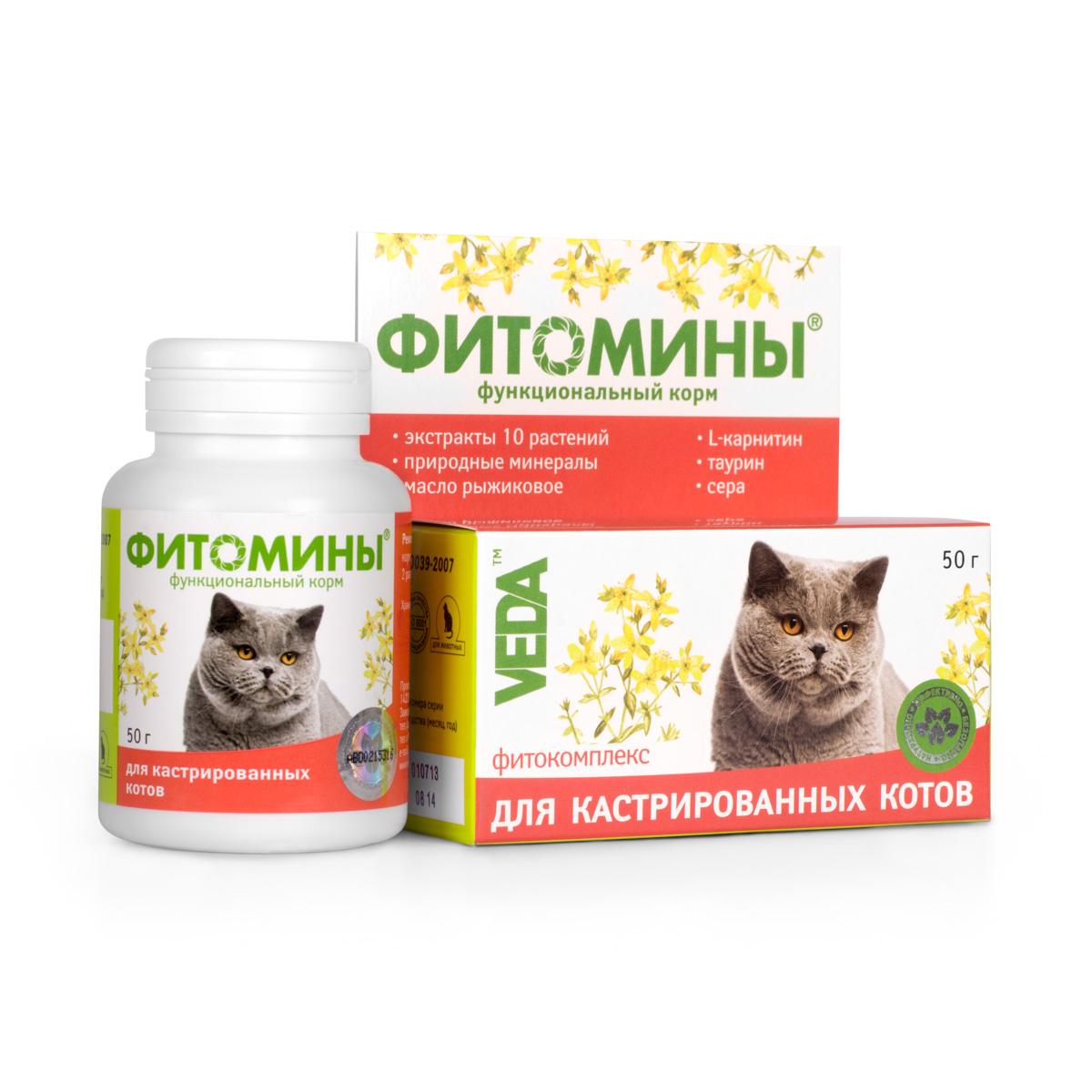 Корм VEDA Фитомины для кастрированных котов, функциональный, 50 г4605543005831Корм функциональный VEDA Фитомины рекомендуется кастрированным котам и стерилизованным кошкам: - для укрепления здоровья и улучшения качества жизни; - для снижения риска развития мочекаменной болезни и ожирения. Состав: лактоза; крахмал; дрожжи пивные; фитокомплекс: листьев березы, створок фасоли, листьев подорожника большого, травы душицы, корней одуванчика, травы тысячелистника, цветков ноготков, травы зверобоя, цветков лабазника вязолистного, листьев мяты перечной; природный минеральный комплекс; паровая рыбная мука; стеарат кальция; масло рыжиковое; L-карнитин; таурин; сера. Товар сертифицирован.