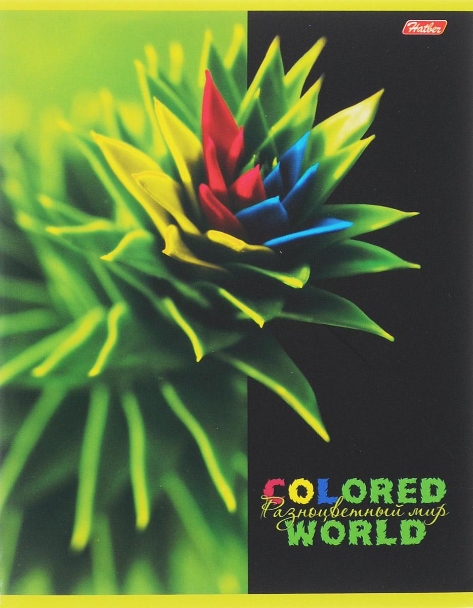 Hatber Тетрадь Разноцветный мир 96 листов в клетку 1455884701ОТетрадь Hatber Разноцветный мир отлично подойдет для старших школьников, студентов и офисных работников.Обложка, выполненная из плотного картона, позволит сохранить тетрадь в аккуратном состоянии на протяжении всего времени использования. Лицевая сторона оформлена изображением удивительных по красоте растений, раскрашенных в яркие и не свойственные природе причудливые цвета.Внутренний блок тетради, соединенный двумя металлическими скрепками, состоит из 96 листов белой бумаги. Стандартная линовка в клетку голубого цвета дополнена полями, совпадающими с лицевой и оборотной стороны листа.