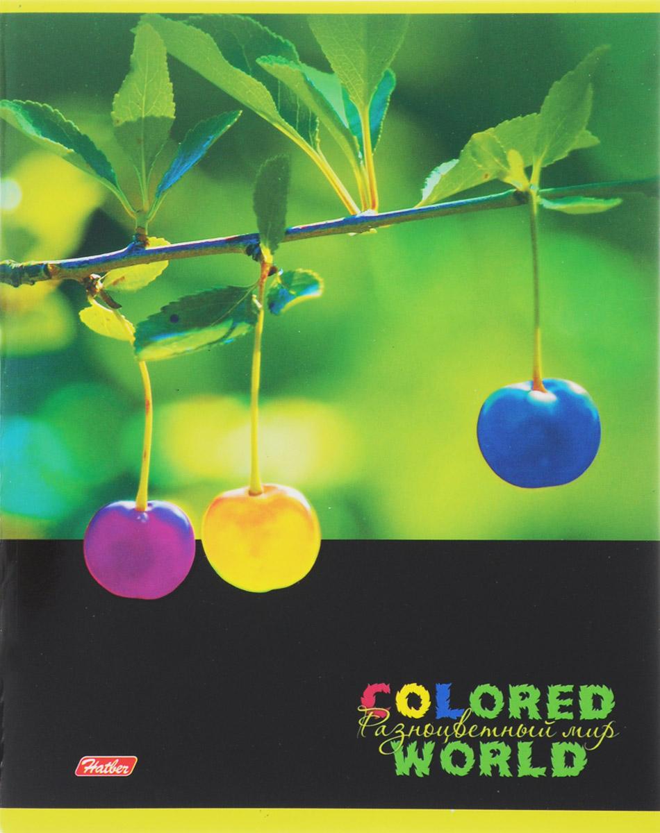 Hatber Тетрадь Разноцветный мир 96 листов в клетку 14559 96Т5вмВ1_14559