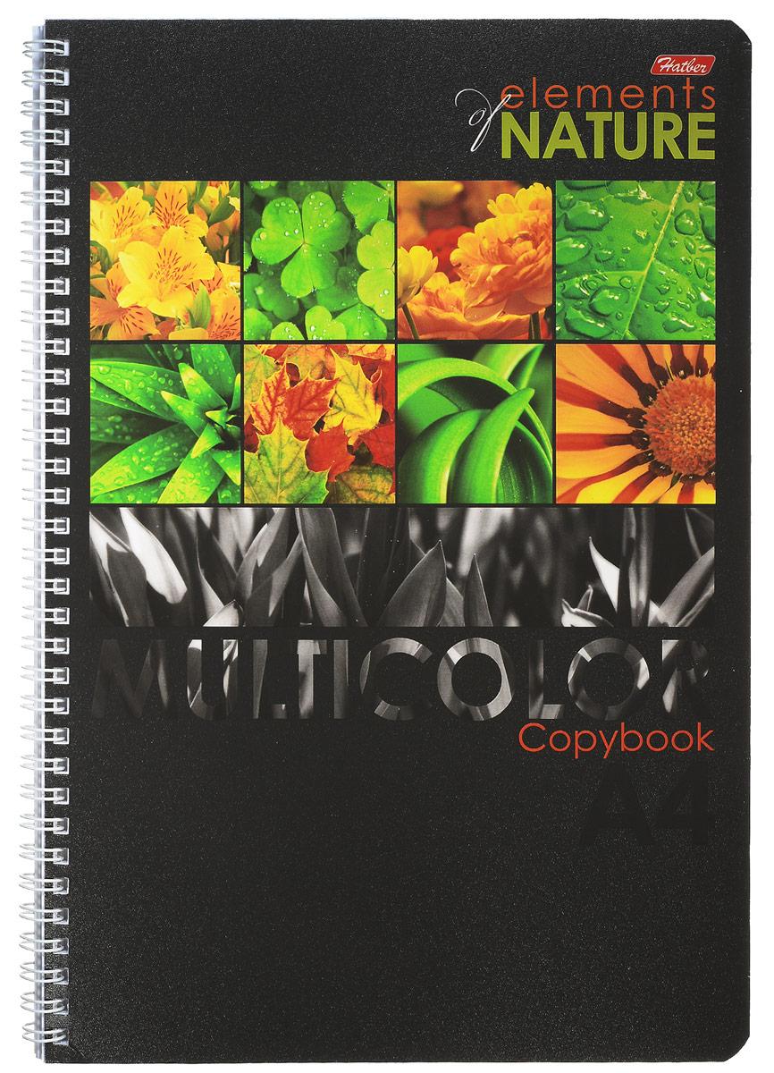 Hatber Тетрадь Multicolor 96 листов в клетку цвет оранжевый зеленый формат А4 hatber тетрадь полосатый мир 96 листов в линейку цвет оранжевый