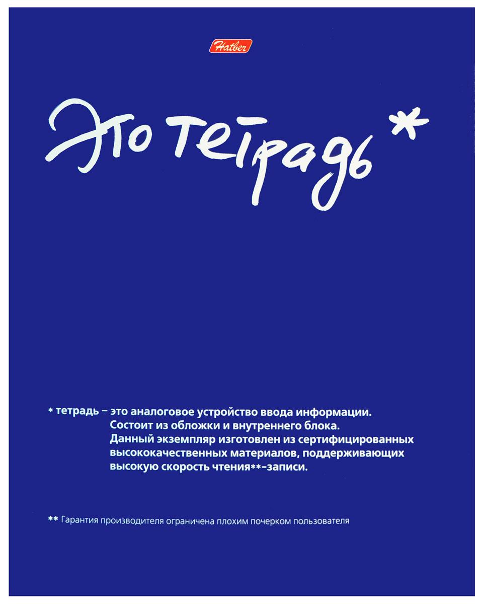 Hatber Тетрадь 48 листов в клетку 03987 hatber тетрадь экстремалы бездорожья 48 листов в клетку цвет синий