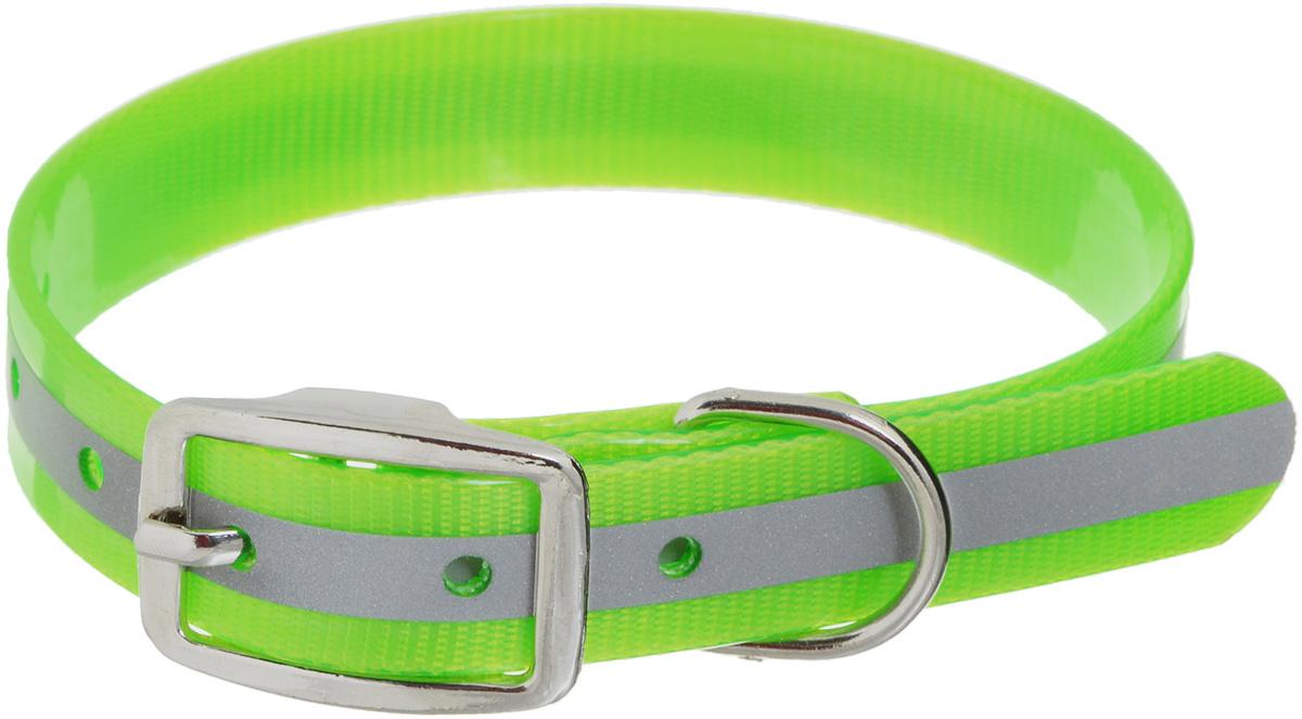 """Ошейник для собак Каскад """"Синтетик"""", со светоотражающей полосой, цвет: салатовый, ширина 2 см, обхват шеи 25-35 см 00220352-05"""