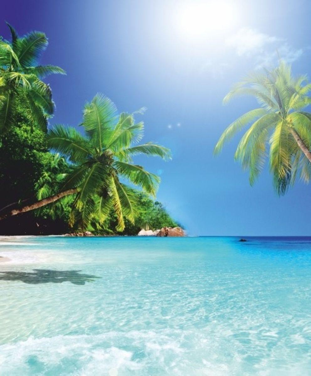 Штора для ванной комнаты Vanstore Райский остров, 180 х 180 см620-19Штора Vanstore Райский остров выполнена из полиэстера и оформлена красочным изображением моря, пляжа и пальм. Она надежно защитит от брызг и капель пространство вашей ванной комнаты в то время, пока вы принимаете душ. В верхней кромке шторы предусмотрены отверстия для пластиковых колец (входят в комплект). Привлекательный дизайн шторы наполнит вашу ванную комнату положительной энергией. Количество колец: 12 шт. Плотность: 100 г/м2.