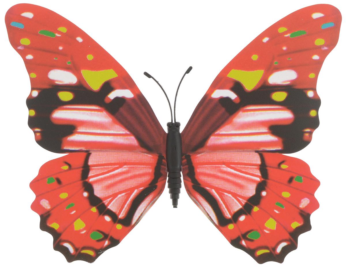 Фигура садовая Village people Тропическая бабочка, с магнитом, 12 х 9,5 см68610_21Ветряная фигурка Village People Тропическая бабочка, изготовленная из ПВХ, это не только красивое украшение, но и замечательный способ отпугнуть птиц с грядок. При дуновении ветра бабочка начинает порхать крыльями. Изделие оснащено магнитом, с помощью которого вы сможете поместить его в любом удобном для вас месте. Яркий дизайн фигурки оживит ландшафт сада.