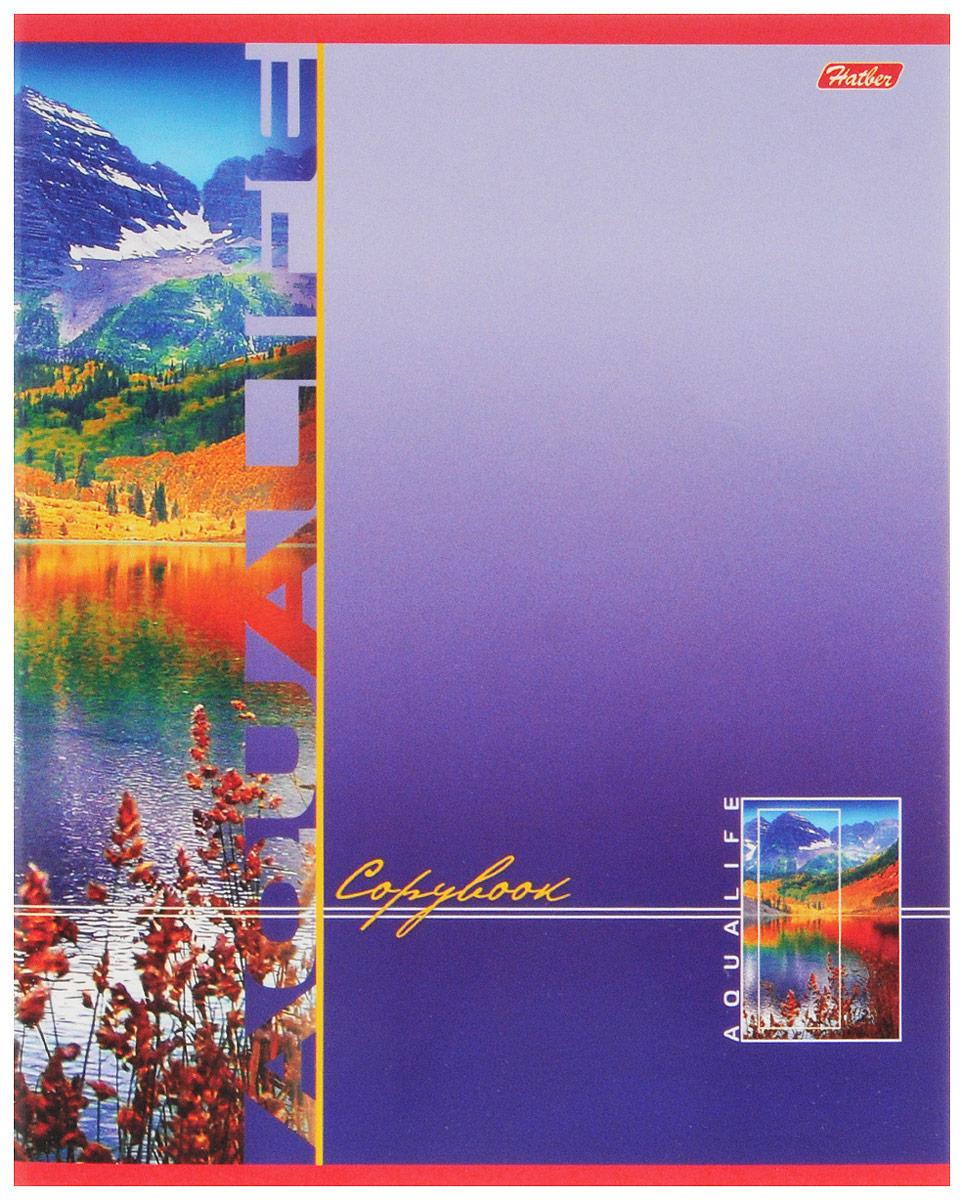 Hatber Тетрадь Аквалайф 80 листов в линейку цвет фиолетовый hatber тетрадь полосатый мир 96 листов в линейку цвет оранжевый