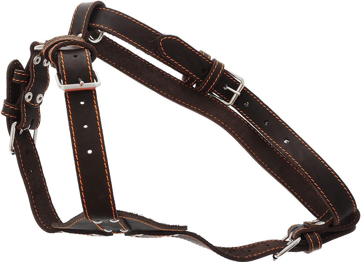 Шлейка для собак Каскад, цвет: темно-коричневый, ширина 2,5 см, обхват груди 69-77 см01025011к_темно-коричневыйОднослойная шлейка Каскад, изготовленная из искусственной кожи, подходит для средних и крупных пород собак. Крепкие металлические элементы делают ее надежной и долговечной. Шлейка - это альтернатива ошейнику. Правильно подобранная шлейка не стесняет движения питомца, не натирает кожу, поэтому животное чувствует себя в ней уверенно и комфортно. Изделие отличается высоким качеством, удобством и универсальностью. Размер регулируется при помощи пряжек. Обхват шеи: 44-60 см. Обхват груди: 69-77 см. Ширина шлейки: 2,5 см.