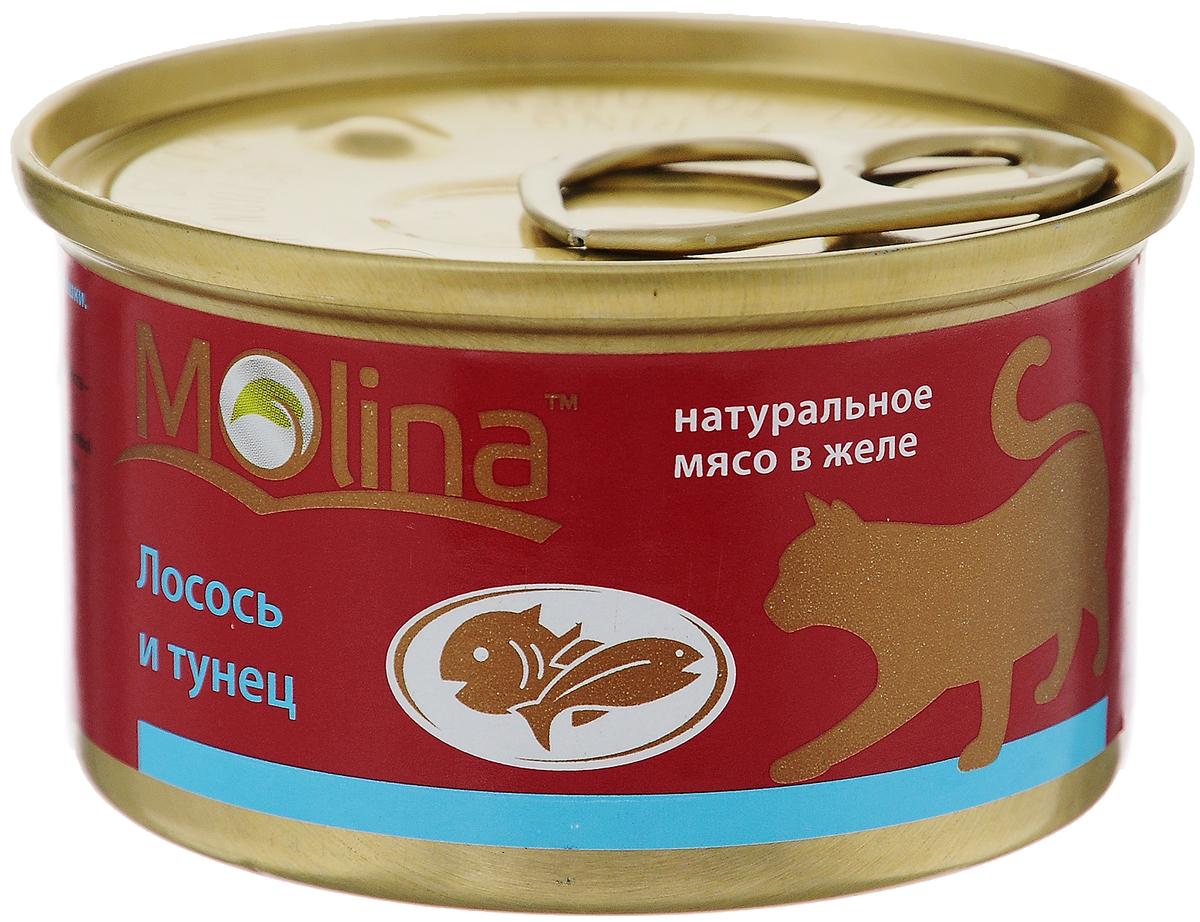 Консервы для кошек Molina, с лососем и тунцом в желе, 80 г0120710Консервы для кошек Molina - это высококачественный, сбалансированный, натуральный продукт, который содержит все необходимые компоненты, обеспечивающие организм ваших питомцев энергией, витаминами и минеральными веществам, необходимыми для здорового роста и развития. Консервы изготовлены из натурального мяса лосося и тунца в желе.Консервы Molina - польза натуральных ингредиентов для долгой и здоровой жизни вашего питомца.Товар сертифицирован.