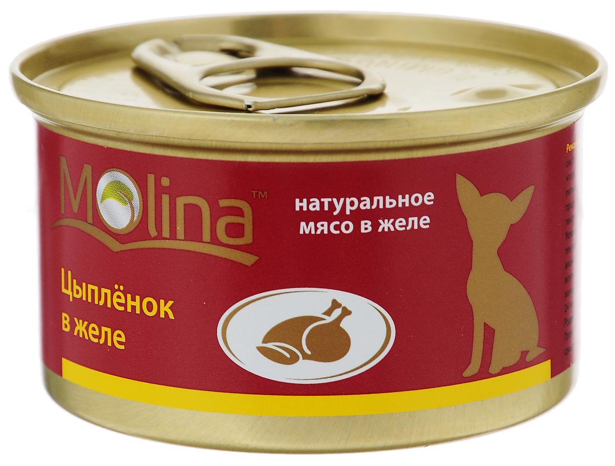 Консервы для собак Molina, с цыпленком в желе, 85 г4620002671006Консервы для собак Molina - это высококачественный, сбалансированный, натуральный продукт, который содержит все необходимые компоненты, обеспечивающие организм ваших питомцев энергией, витаминами и минеральными веществам, необходимыми для здорового роста и развития. Консервы изготовлены из натурального мяса цыпленка в желе. Консервы Molina - польза натуральных ингредиентов для долгой и здоровой жизни вашего питомца. Товар сертифицирован.