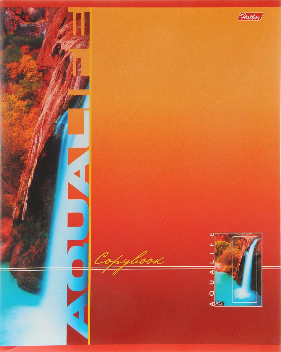 Hatber Тетрадь Аквалайф 96 листов в клетку цвет красный оранжевый hatber тетрадь полосатый мир 96 листов в линейку цвет оранжевый