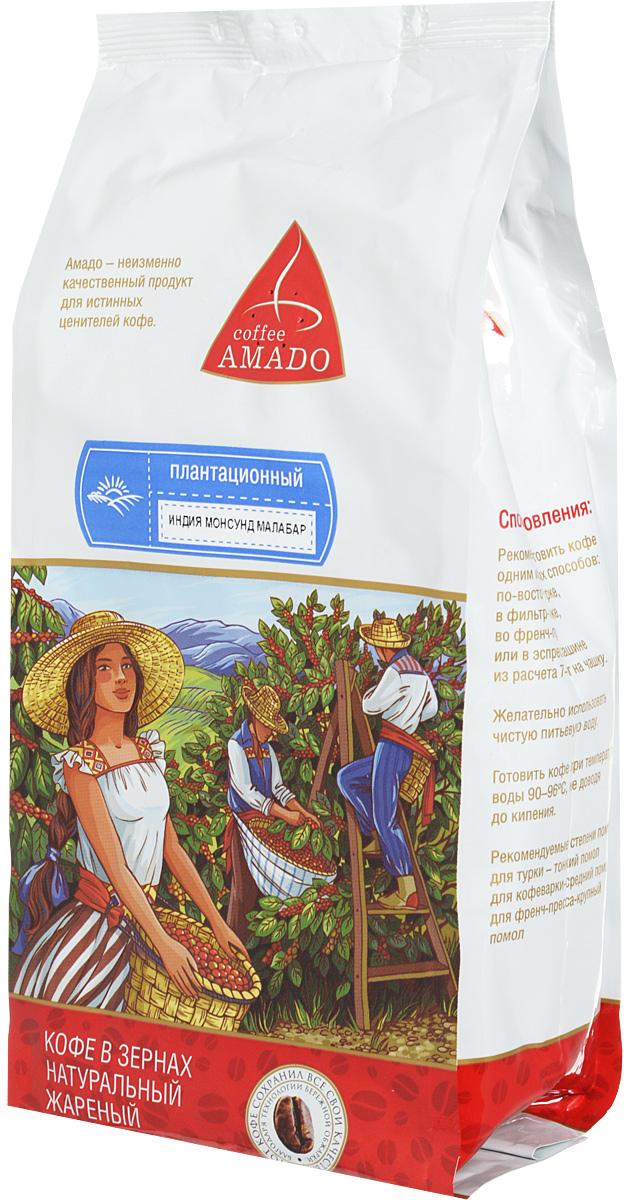 AMADO Индия Монсунд Малабар кофе в зернах, 200 г4607064130658В сезон муссонов в Индии зерна кофе помещают под навесы на несколько дней. Пребывание в условиях повышенной влажности и ветра меняет цвет зерен с зеленого на желтоватый, а вкус кофе приобретает сладость. Рекомендуемый способ приготовления AMADO Индия Монсунд Малабар: по-восточному, френч-пресс, гейзерная кофеварка, фильтркофеварка, кемекс, аэропресс.