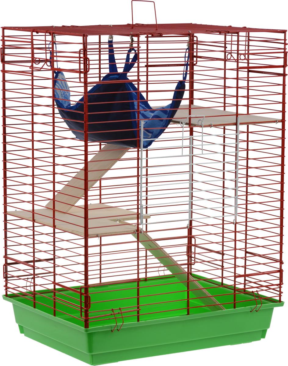 Клетка для шиншилл и хорьков ЗооМарк, цвет: зеленый поддон, красная решетка, 59 х 41 х 79 см. 725дк725дк_зеленый, красныйКлетка ЗооМарк, выполненная из полипропилена и металла, подходит для шиншилл и хорьков. Большая клетка оборудована длинными лестницами и гамаком. Изделие имеет яркий поддон, удобно в использовании и легко чистится. Сверху имеется ручка для переноски. Такая клетка станет уединенным личным пространством и уютным домиком для грызуна.