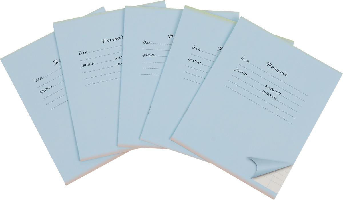 Action! Набор тетрадей 12 листов в линейку цвет голубой 5 шт15293Комплект тетрадей Action! включает в себя 5 тетрадей.Обложка каждой тетради изготовлена из картона. На задней стороне обложки тетради представлен алфавит русского языка. Внутренний блок тетрадей состоит из 12 листов белой бумаги, соединенных скрепками. Стандартная линовка в голубую линейку дополнена полями.