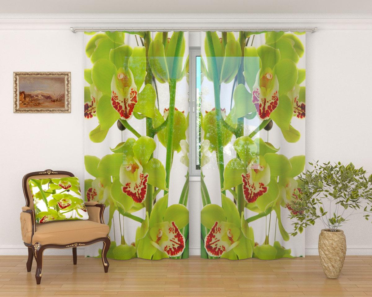 Комплект фототюлей Сирень Зеленая орхидея, на ленте, высота 260 см03569-ФТ-ВЛ-001Фототюль Сирень Зеленая орхидея из легкой парящей ткани - вуали - благодаря своей прозрачности позволяет создать в комнате уютную атмосферу, отлично дополняет украшение любого окна. Ткань хорошо держит форму, не требует специального ухода. Яркая и чёткая картинка будет радовать вас каждый день. Крепление на карниз при помощи шторной ленты на крючки. В комплекте: 2 тюля. Ширина полотна: 145 см. Высота полотна: 260 см. Рекомендации по уходу: стирка при 30 градусах, гладить при температуре до 110 градусов. Изображение на мониторе может немного отличаться от реального.