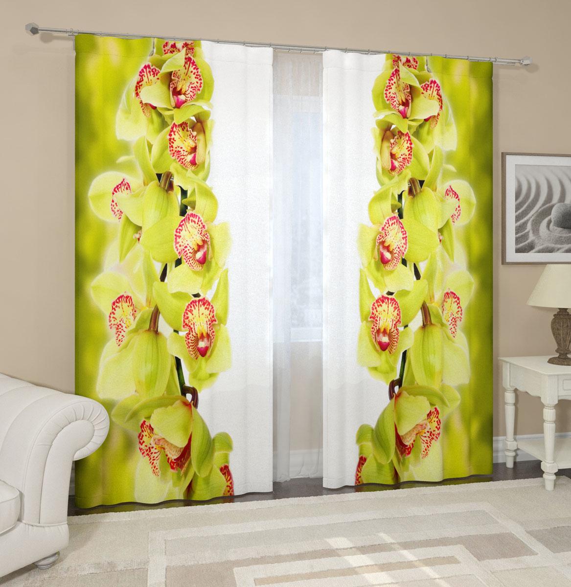 Комплект фотоштор Сирень Ветки зеленой орхидеи, на ленте, высота 260 см04612-ФШ-ГБ-001Фотошторы Сирень Ветки зеленой орхидеи, выполненные из габардина (100% полиэстера), отлично дополнят украшение любого интерьера. Особенностью ткани габардин является небольшая плотность, из-за чего ткань хорошо пропускает воздух и солнечный свет. Ткань хорошо держит форму, не требует специального ухода. Крепление на карниз при помощи шторной ленты на крючки. В комплекте 2 шторы. Ширина одного полотна: 145 см. Высота штор: 260 см. Рекомендации по уходу: стирка при 30 градусах, гладить при температуре до 110 градусов. Изображение на мониторе может немного отличаться от реального.