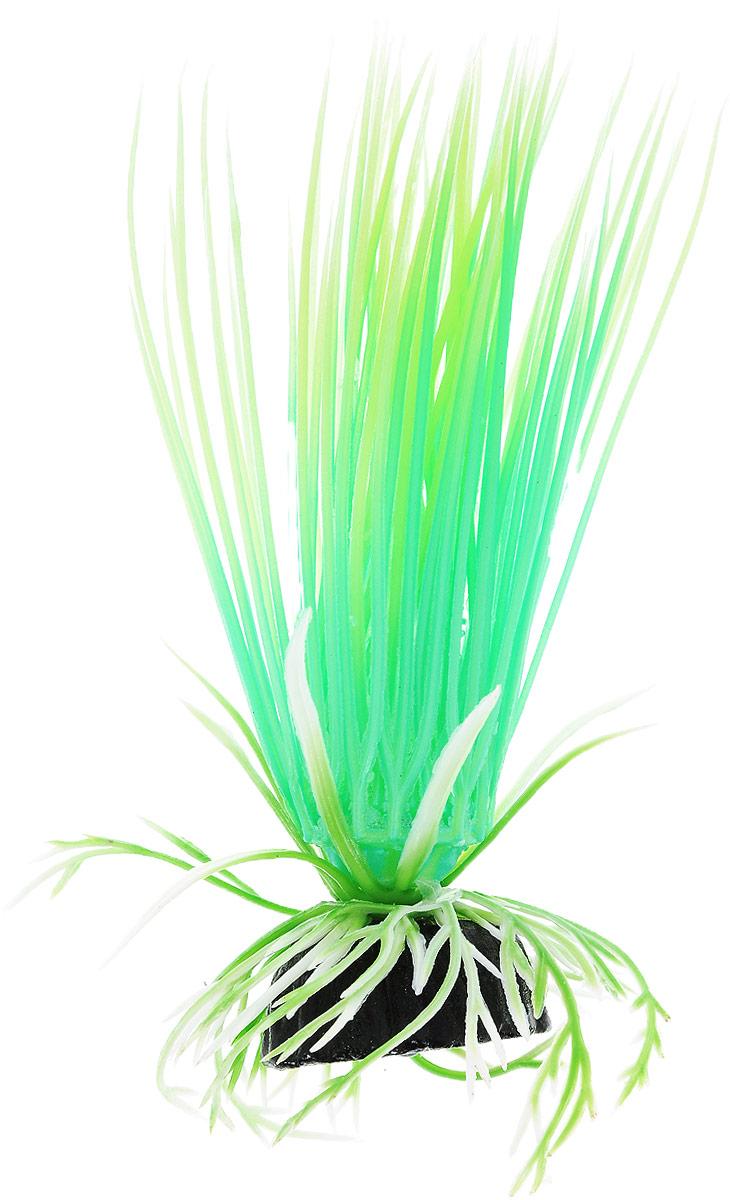 Растение для аквариума Barbus Акорус, пластиковое, светящееся, высота 10 см0120710Растение для аквариума Barbus Акорус, выполненное из высококачественного нетоксичного пластика, станет прекрасным украшением вашего аквариума. Светящееся в темноте растение станет замечательным и необычным украшением вашего аквариума. В воде происходит абсолютная имитация живых растений. Изделие не требует дополнительного ухода и просто в применении. Растение абсолютно безопасно, нейтрально к водному балансу, устойчиво к истиранию краски, подходит как для пресноводного, так и для морского аквариума. Растение для аквариума Barbus Акорус поможет вам смоделировать потрясающий пейзаж на дне вашего аквариума или террариума.