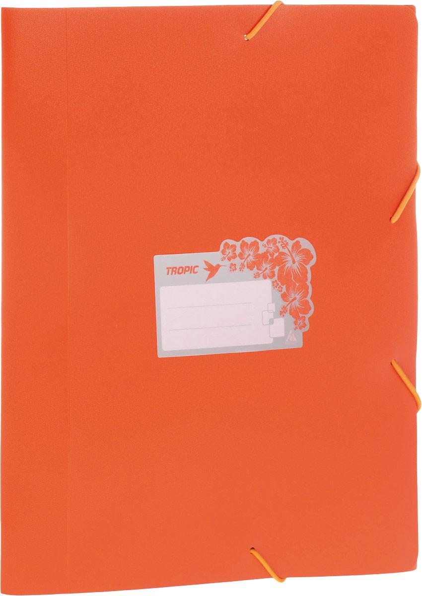 Бюрократ Папка-короб на резинке Tropic формат А4 цвет оранжевый 816255