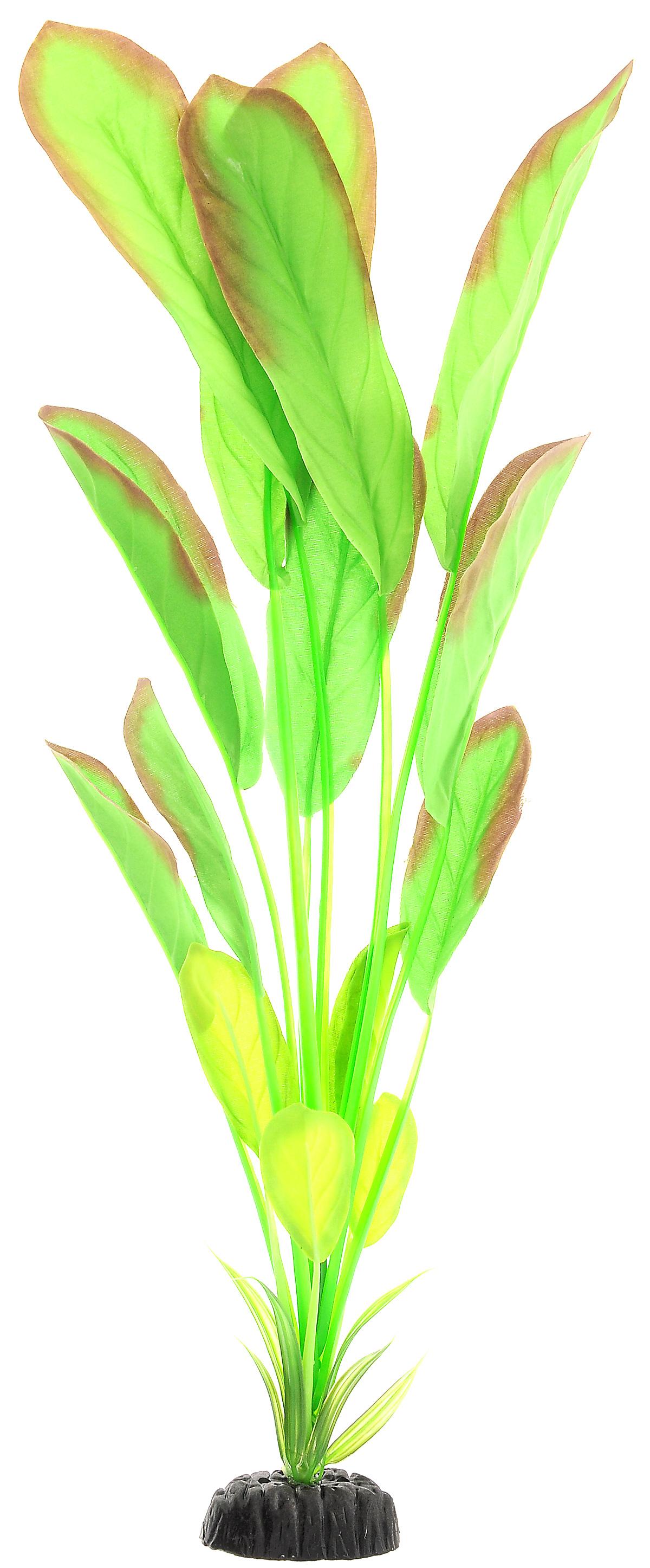 Растение для аквариума Barbus Эхинодорус, шелковое, высота 50 см. Plant 037/50Plant 037/50Растение для аквариума Barbus Эхинодорус, выполненное из высококачественного нетоксичного пластика и шелка, станет прекрасным украшением вашего аквариума. Шелковое растение идеально подходит для дизайна всех видов аквариумов. В воде происходит абсолютная имитация живых растений. Изделие не требует дополнительного ухода и просто в применении. Растение абсолютно безопасно, нейтрально к водному балансу, устойчиво к истиранию краски, подходит как для пресноводного, так и для морского аквариума. Растение для аквариума Barbus Эхинодорус поможет вам смоделировать потрясающий пейзаж на дне вашего аквариума или террариума.