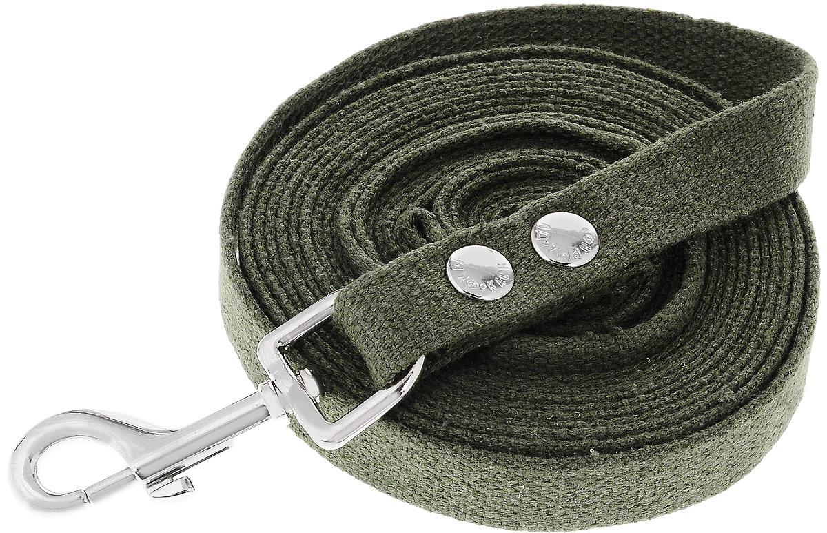Поводок брезентовый Каскад Классика, для собак, ширина 2 см, длина 5 м. 2120013_зеленый перчатки сноубордические женские dakine charger glove buckskin