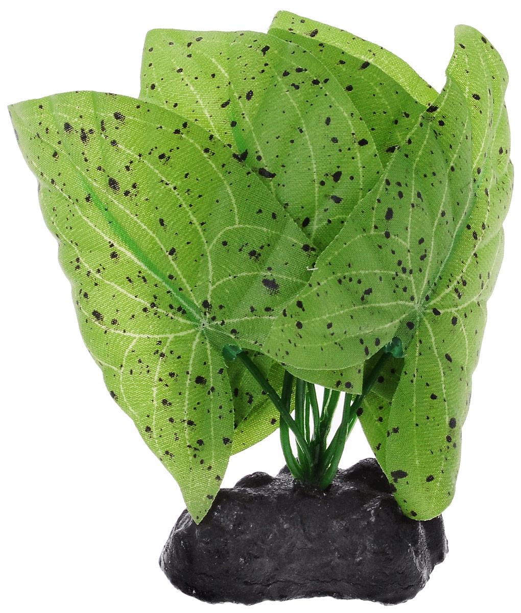 Растение для аквариума Barbus Нимфея пятнистая, шелковое, высота 10 смPlant 054/10Растение для аквариума Barbus Нимфея пятнистая, выполненное из качественного шелка, станет оригинальным украшением вашего аквариума. В воде создается абсолютная имитация живого растения. Можно использовать в любой воде: пресной или морской. Изделие безопасно, не токсично, нейтрально к водному балансу, устойчиво к истиранию краски. Растение Barbus поможет вам смоделировать потрясающий пейзаж на дне вашего аквариума или террариума. Высота растения: 10 см.