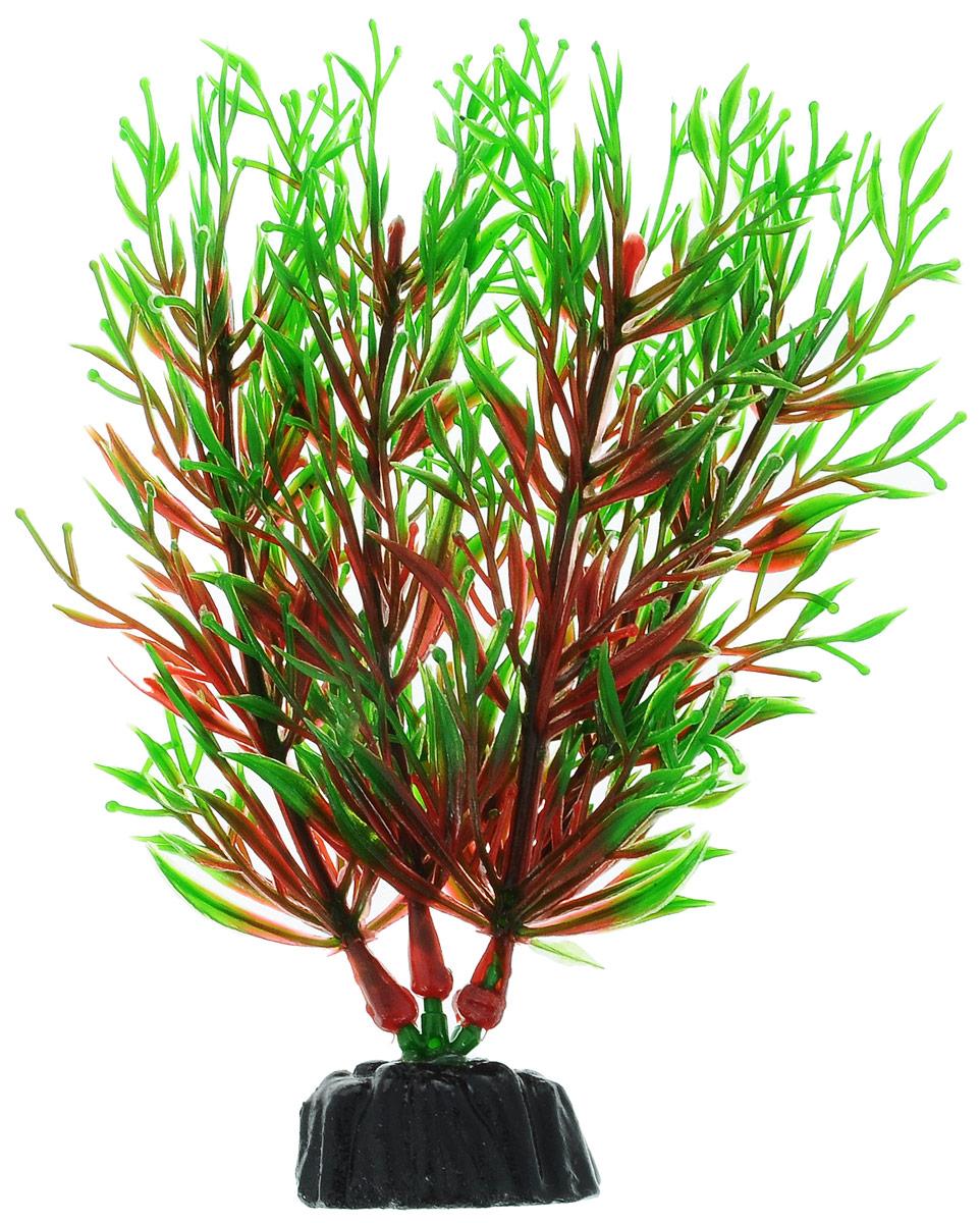 Растение для аквариума Barbus Перистолистник красный, пластиковое, высота 10 смPlant 001/10Растение Barbus Перистолистник красный, выполненное из высококачественного нетоксичного пластика, станет прекрасным украшением вашего аквариума. Пластиковое растение идеально подходит для дизайна всех видов аквариумов. В воде происходит абсолютная имитация живых растений. Изделие не требует дополнительного ухода. Оно абсолютно безопасно, нейтрально к водному балансу, устойчиво к истиранию краски, подходит как для пресноводного, так и для морского аквариума. Растение для аквариума Barbus Перистолистник красный поможет вам смоделировать потрясающий пейзаж на дне вашего аквариума. Высота растения: 10 см.