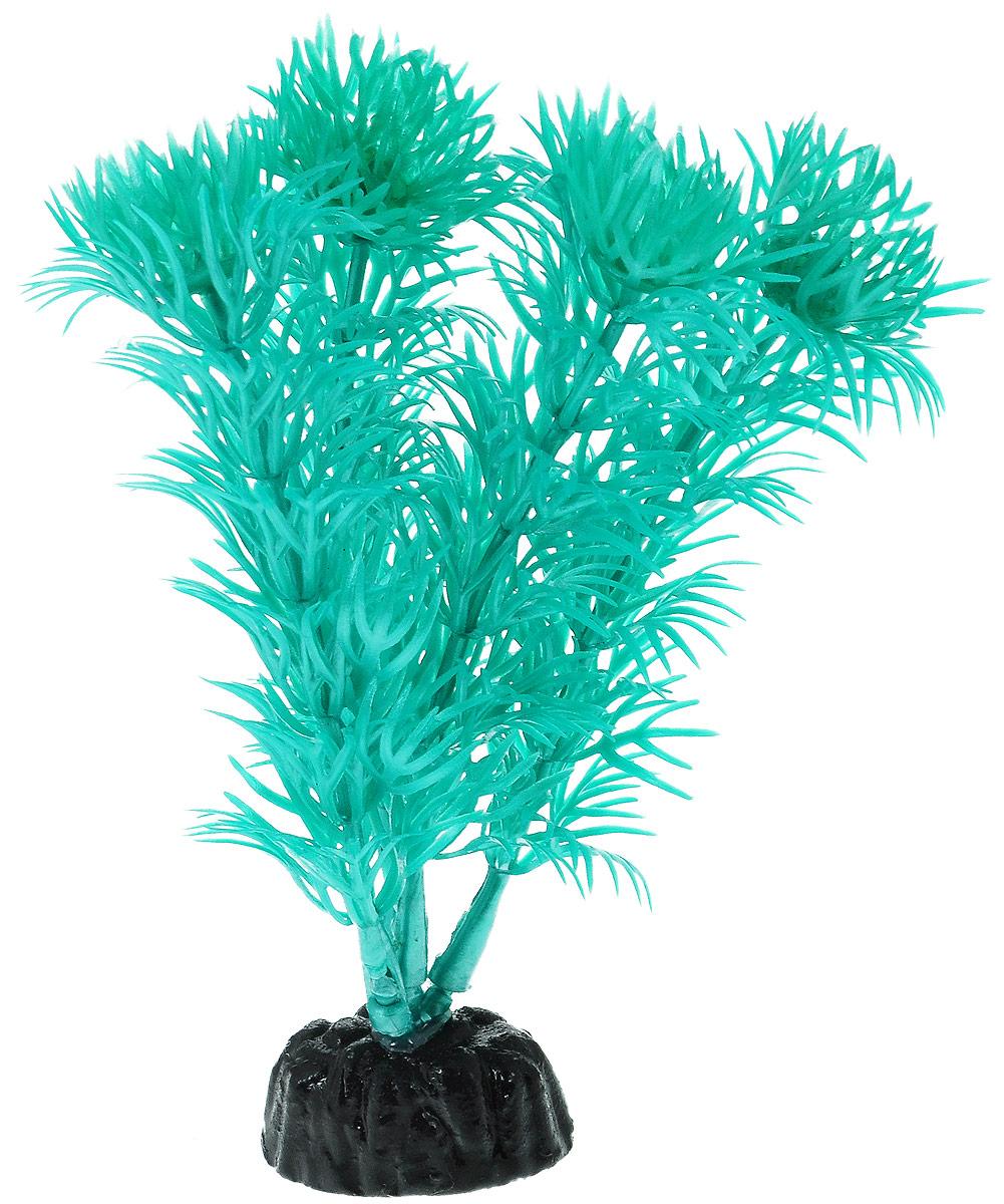 Растение для аквариума Barbus Кабомба, пластиковое, цвет: бирюзовый, высота 10 смPlant 019/10Растение для аквариума Barbus Кабомба, выполненное из высококачественного нетоксичного пластика, станет прекрасным украшением вашего аквариума. Пластиковое растение идеально подходит для дизайна всех видов аквариумов. В воде происходит абсолютная имитация живых растений. Изделие не требует дополнительного ухода. Оно абсолютно безопасно, нейтрально к водному балансу, устойчиво к истиранию краски, подходит как для пресноводного, так и для морского аквариума. Растение для аквариума Barbus Кабомба поможет вам смоделировать потрясающий пейзаж на дне вашего аквариума. Высота растения: 10 см.