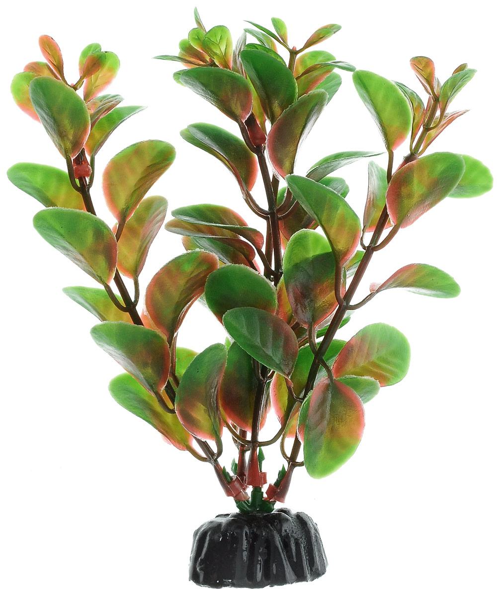Растение для аквариума Barbus Людвигия красная, пластиковое, высота 10 см0120710Растение для аквариума Barbus Людвигия красная, выполненное из качественного пластика, станет прекрасным украшением вашего аквариума. Пластиковое растение идеально подходит для дизайна всех видов аквариумов. Оно абсолютно безопасно, нейтрально к водному балансу, устойчиво к истиранию краски, подходит как для пресноводного, так и для морского аквариума. Растение для аквариума Barbus поможет вам смоделировать потрясающий пейзаж на дне вашего аквариума или террариума. Высота растения: 10 см.
