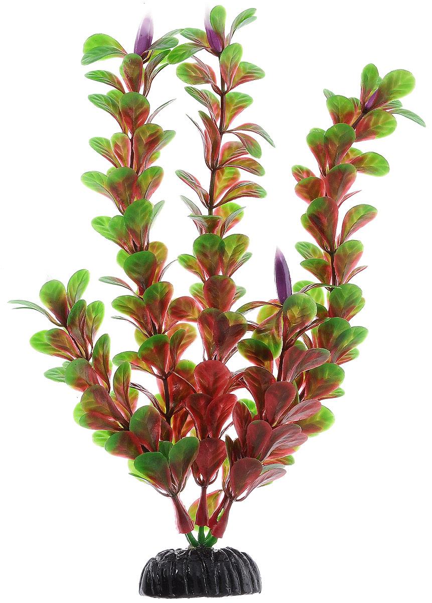 Растение для аквариума Barbus Людвигия ползучая (красная), пластиковое, высота 20 см0120710Растение для аквариума Barbus Людвигия ползучая (красная), выполненное из качественного пластика, станет оригинальным украшением вашего аквариума. Пластиковое растение идеально подходит для дизайна всех видов аквариумов. Оно абсолютно безопасно, нейтрально к водному балансу, устойчиво к истиранию краски, подходит как для пресноводного, так и для морского аквариума. Растение для аквариума Barbus поможет вам смоделировать потрясающий пейзаж на дне вашего аквариума или террариума. Высота растения: 20 см.