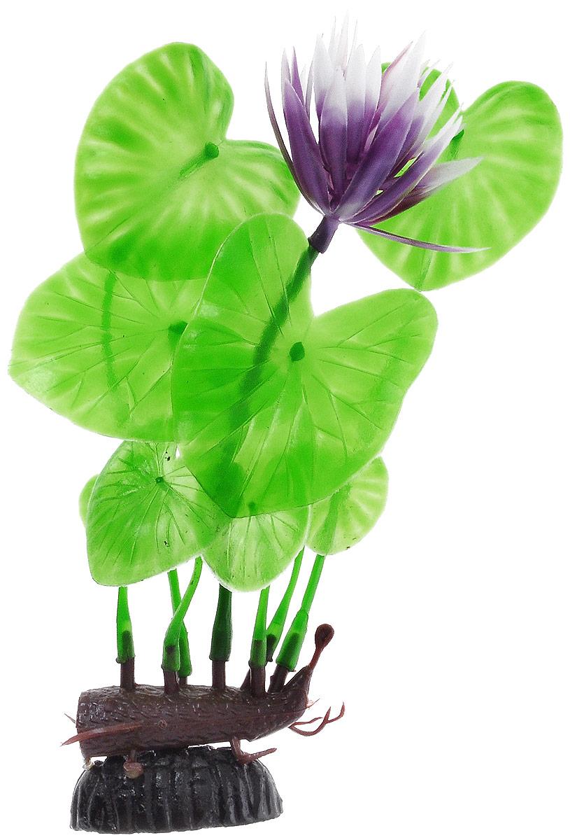 Растение для аквариума Barbus Лилия зеленая с цветком, пластиковое, высота 20 смPlant 013/20Растение для аквариума Barbus Лилия зеленая с цветком, выполненное из качественного пластика, станет оригинальным украшением вашего аквариума. Пластиковое растение идеально подходит для дизайна всех видов аквариумов. Оно абсолютно безопасно, нейтрально к водному балансу, устойчиво к истиранию краски, подходит как для пресноводного, так и для морского аквариума. Растение для аквариума Barbus поможет вам смоделировать потрясающий пейзаж на дне вашего аквариума или террариума. Высота растения: 20 см.