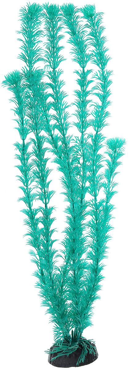 Растение для аквариума Barbus Кабомба, пластиковое, цвет: бирюзовый, высота 50 смPlant 019/50Растение Barbus Кабомба, выполненное из высококачественного нетоксичного пластика, станет прекрасным украшением вашего аквариума. Пластиковое растение идеально подходит для дизайна всех видов аквариумов. В воде происходит абсолютная имитация живых растений. Изделие не требует дополнительного ухода. Оно абсолютно безопасно, нейтрально к водному балансу, устойчиво к истиранию краски, подходит как для пресноводного, так и для морского аквариума. Растение для аквариума Barbus Кабомба поможет вам смоделировать потрясающий пейзаж на дне вашего аквариума. Высота растения: 50 см.