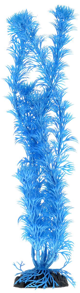 Растение для аквариума Barbus Кабомба, пластиковое, цвет: синий, высота 30 см0120710Растение для аквариума Barbus Кабомба, выполненное из качественного пластика, станет оригинальным украшением вашего аквариума. Пластиковое растение идеально подходит для дизайна всех видов аквариумов. Оно абсолютно безопасно, нейтрально к водному балансу, устойчиво к истиранию краски, подходит как для пресноводного, так и для морского аквариума. Растение для аквариума Barbus поможет вам смоделировать потрясающий пейзаж на дне вашего аквариума или террариума. Высота растения: 30 см.