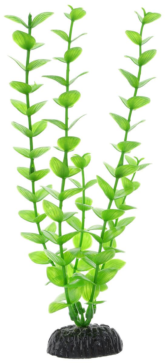 Растение для аквариума Barbus Бакопа зеленая, пластиковое, высота 20 смPlant 010/20Растение для аквариума Barbus Бакопа зеленая, выполненное из качественного пластика, станет оригинальным украшением вашего аквариума. Пластиковое растение идеально подходит для дизайна всех видов аквариумов. Оно абсолютно безопасно, нейтрально к водному балансу, устойчиво к истиранию краски, подходит как для пресноводного, так и для морского аквариума. Растение для аквариума Barbus поможет вам смоделировать потрясающий пейзаж на дне вашего аквариума или террариума. Высота растения: 20 см.