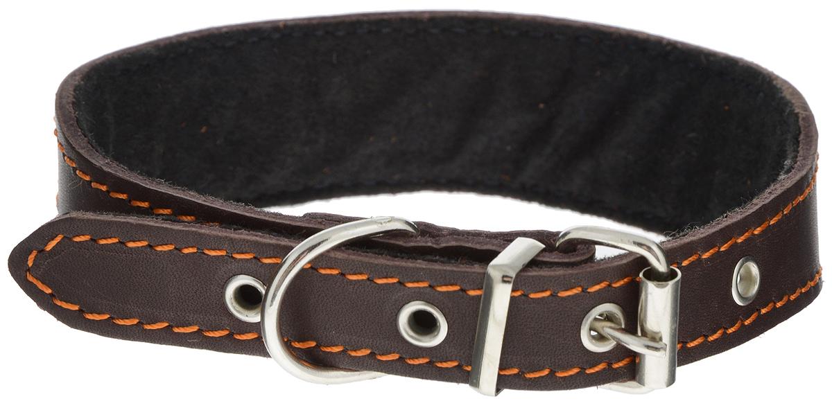 "Ошейник для собак Каскад ""Классика"", цвет: темно-коричневый, ширина 3,5 см, обхват шеи 32-41 см. 00000026к 00000026к_темно-коричневый"