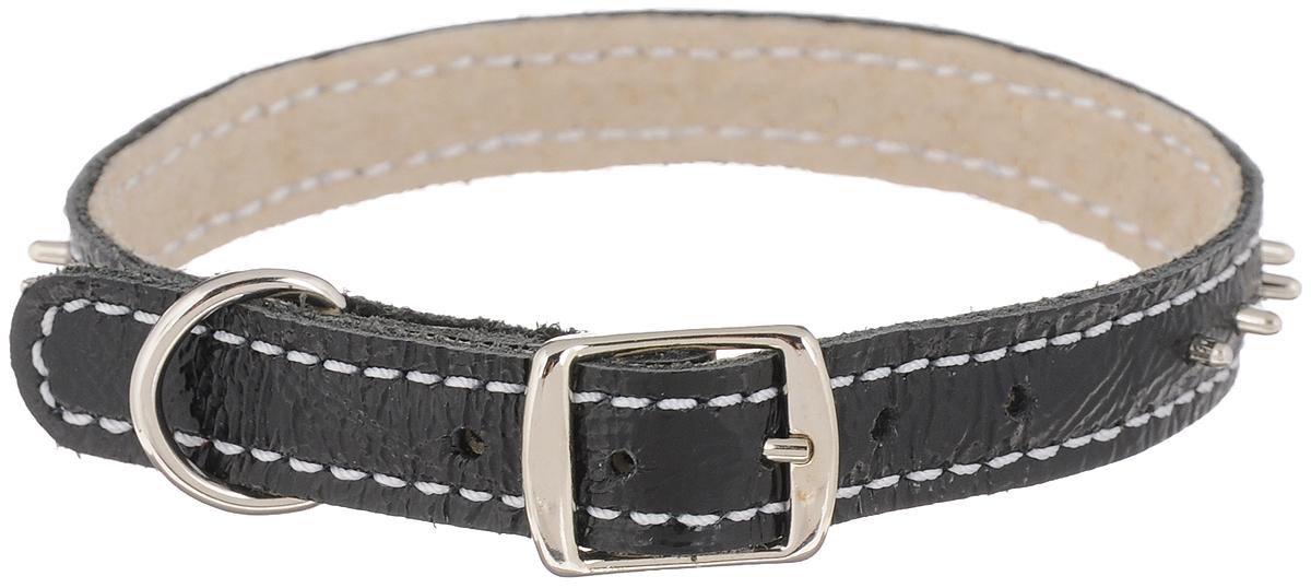 Ошейник для собак Каскад Классика, двойной, с шипами, цвет: черный, ширина 1,2 см, обхват шеи 20-24 см00012103чОшейник для собак Каскад Классика изготовлен из натуральной кожи, устойчивой к влажности и перепадам температур. Клеевой слой, сверхпрочные нити, крепкие металлические элементы делают ошейник надежным и долговечным. Изделие отличается высоким качеством, удобством и универсальностью. По всей длине ошейник украшен металлическими шипами. Размер ошейника регулируется при помощи пряжки, зафиксированной на одном из 5 отверстий. Минимальный обхват шеи: 20 см. Максимальный обхват шеи: 24 см. Ширина ошейника: 1,2 см.
