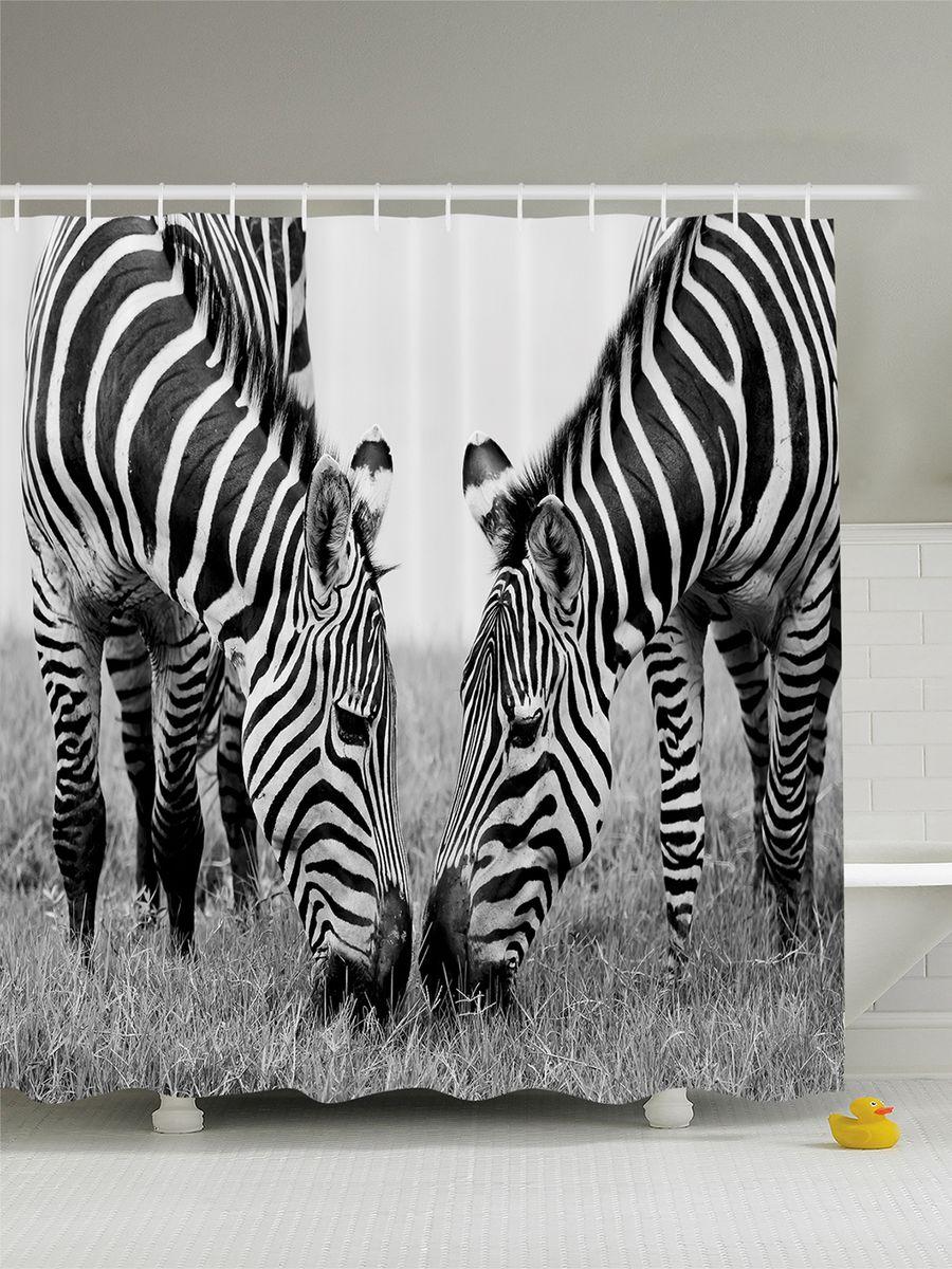 Штора для ванной комнаты Magic Lady Две зебры, 180 х 200 смшв_8903Штора Magic Lady Две зебры, изготовленная из высококачественного сатена (полиэстер 100%), отлично дополнит любой интерьер ванной комнаты. При изготовлении используются специальные гипоаллергенные чернила для прямой печати по ткани, безопасные для человека. В комплекте: 1 штора, 12 крючков. Обращаем ваше внимание, фактический цвет изделия может незначительно отличаться от представленного на фото.