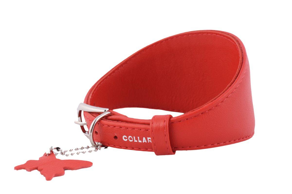 Ошейник CoLLaR Glamour, для борзых собак, цвет: красный, ширина 15 мм, длина 29-35 см34663Ошейник CoLLaR GLAMOUR для борзых собак без украшений (ширина 15мм, длина 29-35см) красный