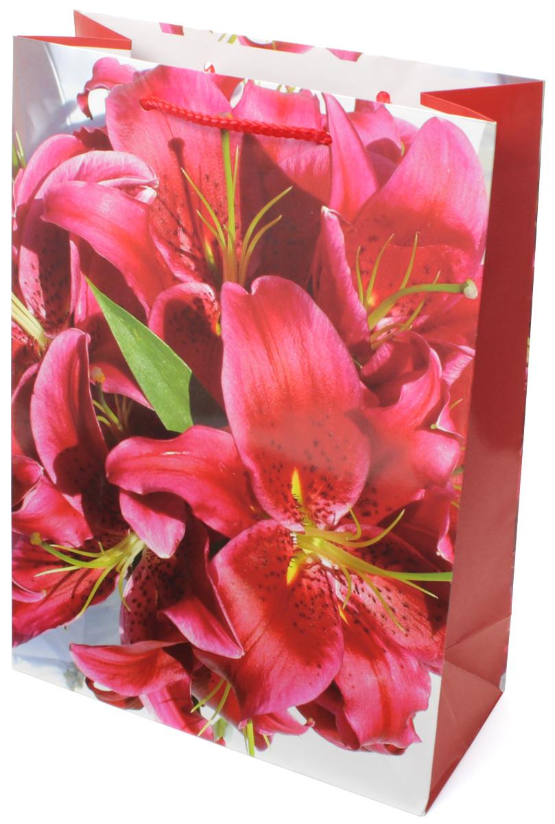 Пакет подарочный МегаМАГ Красные лилии, 22 х 31 х 10 см. 782 MLKOC_GIR288LEDBALL_RПодарочный пакет МегаМАГ, изготовленный из плотной ламинированной бумаги, станет незаменимым дополнением к выбранному подарку. Для удобной переноски на пакете имеются две ручки-шнурки.Подарок, преподнесенный в оригинальной упаковке, всегда будет самым эффектным и запоминающимся. Окружите близких людей вниманием и заботой, вручив презент в нарядном, праздничном оформлении.