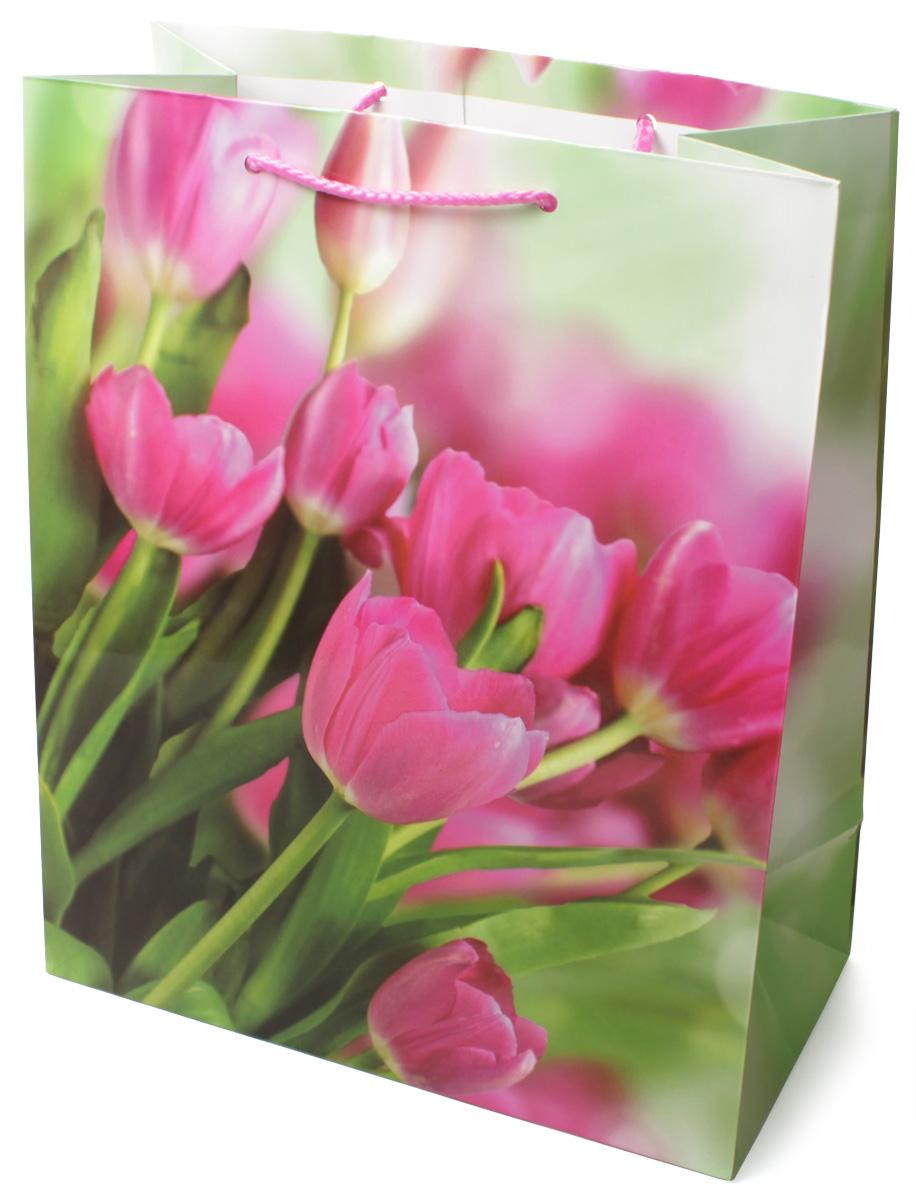 Пакет подарочный МегаМАГ Розовые тюльпаны, 26,4 х 32,7 х 13,6 см. 3118 L3118 LПодарочный пакет МегаМАГ, изготовленный из плотной ламинированной бумаги, станет незаменимым дополнением к выбранному подарку. Для удобной переноски на пакете имеются две ручки-шнурки. Подарок, преподнесенный в оригинальной упаковке, всегда будет самым эффектным и запоминающимся. Окружите близких людей вниманием и заботой, вручив презент в нарядном, праздничном оформлении.