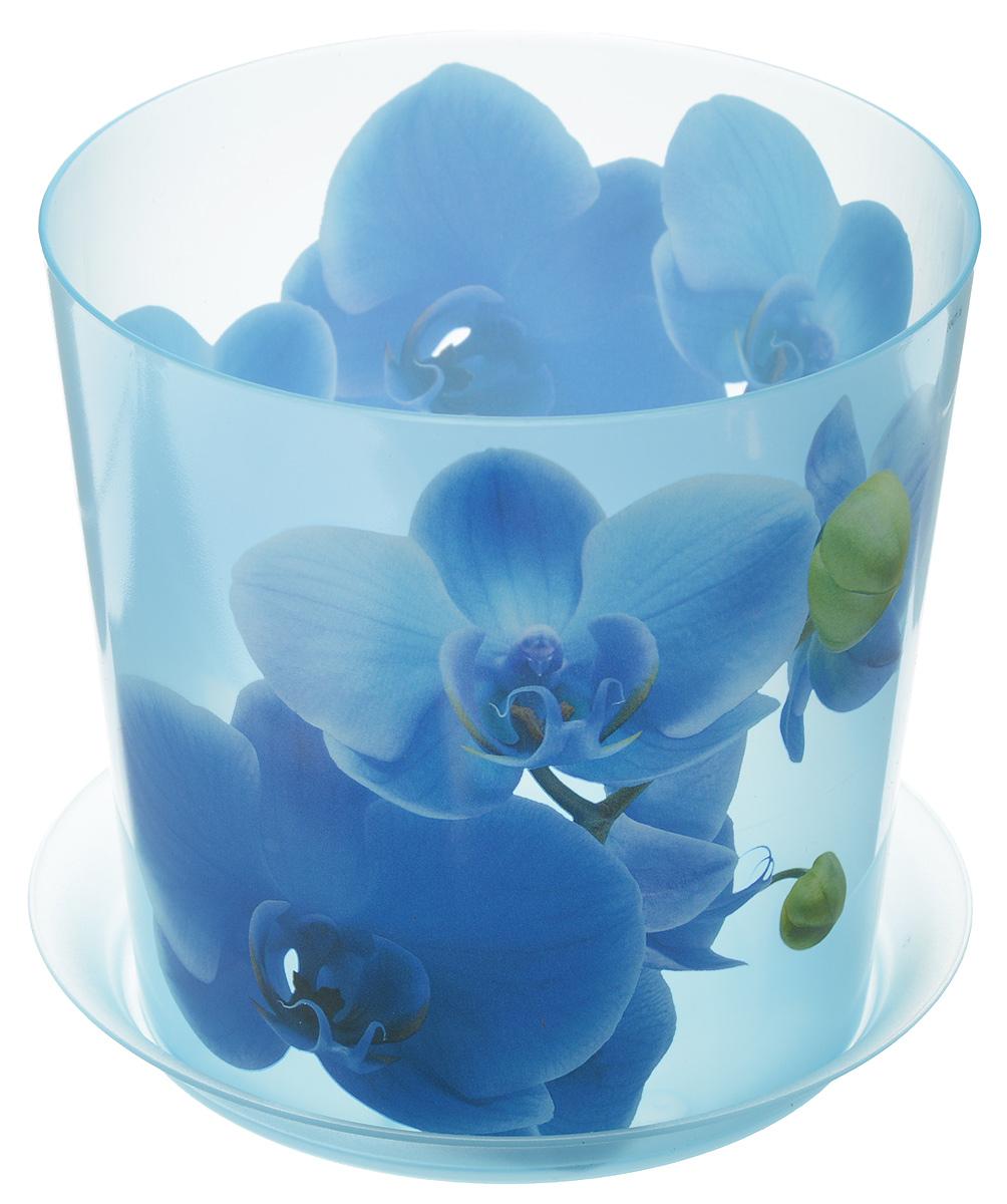 Кашпо Idea Деко, с подставкой, цвет: голубой, 1,2 лМ 3105Кашпо Idea Деко изготовлено из высококачественного полипропилена. Специальный поддон предназначен для стока воды. Изделие прекрасно подходит для выращивания растений и цветов в домашних условиях. Лаконичный дизайн впишется в интерьер любого помещения. Диаметр поддона: 13,5 см. Диаметр кашпо по верхнему краю: 12,5 см. Высота кашпо: 12 см. Объем кашпо: 1,2 л.