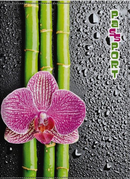 Обложка для паспорта женская КвикДекор Орхидея, цвет: черно-розовый. DC-15-0066-1021201_01Оригинальная, яркая и качественная обложка для паспорта КвикДекор Орхидея изготовлена из качественной экокожи. Подходит для всех видов паспортов, как общегражданских, так и заграничных. Изображение устойчиво к стиранию. Изделие раскладывается пополам.Яркий современный дизайн, который является основной фишкой данной модели, будет радовать глаз.