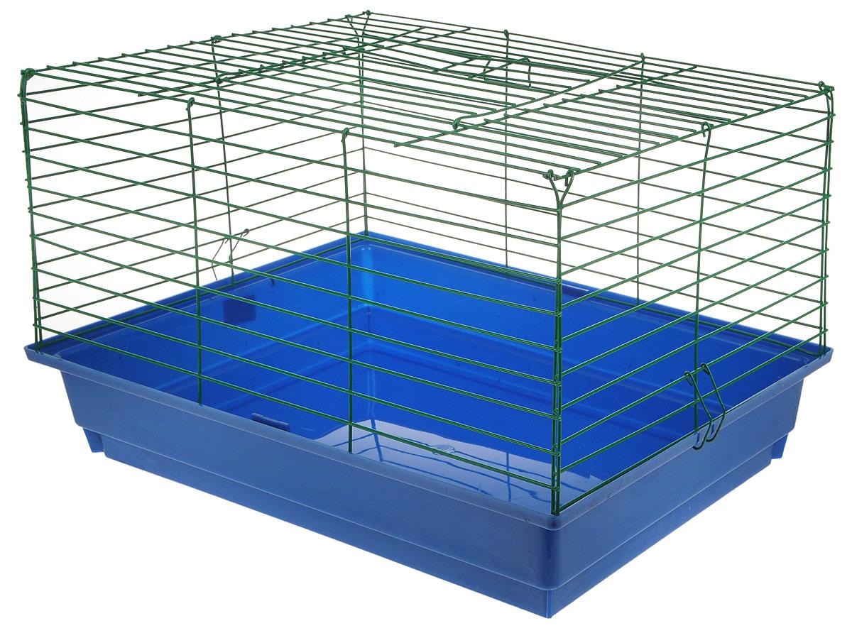 Клетка для кроликов ЗооМарк, цвет: синий поддон, зеленая решетка, 59 х 40 х 35 см620СЗКлетка для кроликов ЗооМарк, выполненная из металла и пластика, предназначена для содержания вашего любимца. Клетка имеет прямоугольную форму, очень просторна, оснащена съемным поддоном. Она очень легко собирается и разбирается. Такая клетка станет для вашего питомца уютным домиком и надежным убежищем.