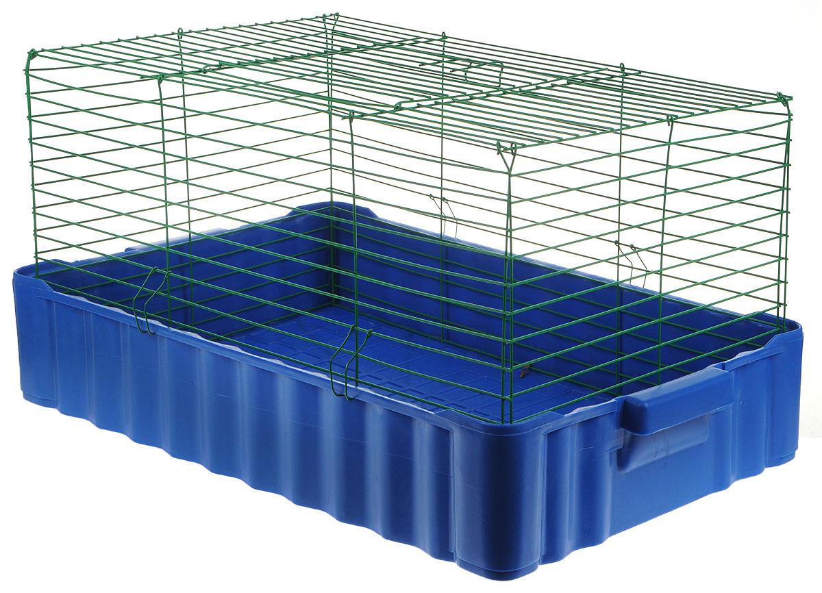 Клетка для кроликов ЗооМарк, цвет: синий поддон, зеленая решетка, 75 х 46 х 40 см640СЗКлетка для кроликов ЗооМарк, выполненная из металла и пластика, предназначена для содержания вашего любимца. Клетка имеет прямоугольную форму и очень просторна. Размеры позволят оснастить клетку всеми необходимыми предметами. Она очень легко собирается и разбирается. Такая клетка станет для вашего питомца уютным домиком и надежным убежищем. Расстояние между прутьями: 2,1 см.