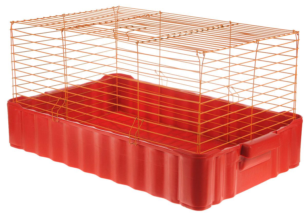 Клетка для кроликов ЗооМарк, цвет: красный поддон, оранжевая решетка, 75 х 46 х 40 см0120710Клетка для кроликов ЗооМарк, выполненная из металла и пластика, предназначена для содержания вашего любимца. Клетка имеет прямоугольную форму и очень просторна. Размеры позволят оснастить клетку всеми необходимыми предметами. Она очень легко собирается и разбирается. Такая клетка станет для вашего питомца уютным домиком и надежным убежищем.