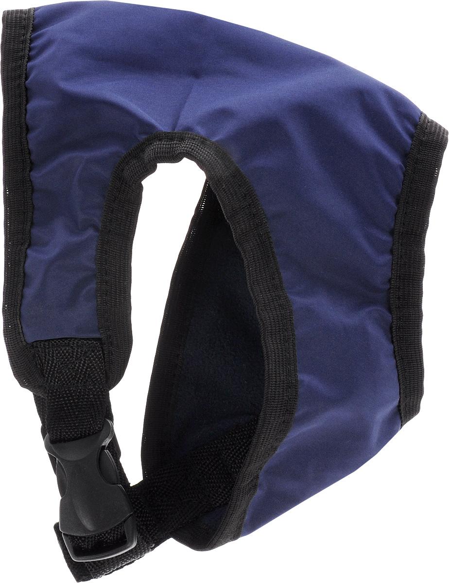 Шлейка для собак ЗооМарк, цвет: синий, черный. Размер 1Ш-1_синий, черныйШлейка для собак ЗооМарк выполнена из плащевки, а на подкладке используется флис. Изделие оснащено специальным крючком, к которому вы с легкостью сможете прикрепить поводок. Шлейка имеет застежку фастекс и регулируется при помощи пряжки. Шлейка - это альтернатива ошейнику. Правильно подобранная шлейка не стесняет движения питомца, не натирает кожу, поэтому животное чувствует себя в ней уверенно и комфортно. Изделие отличается высоким качеством, удобством и универсальностью. Обхват груди: 22-25 см. Длина спинки: 14 см. Ширина ремней: 2 см.