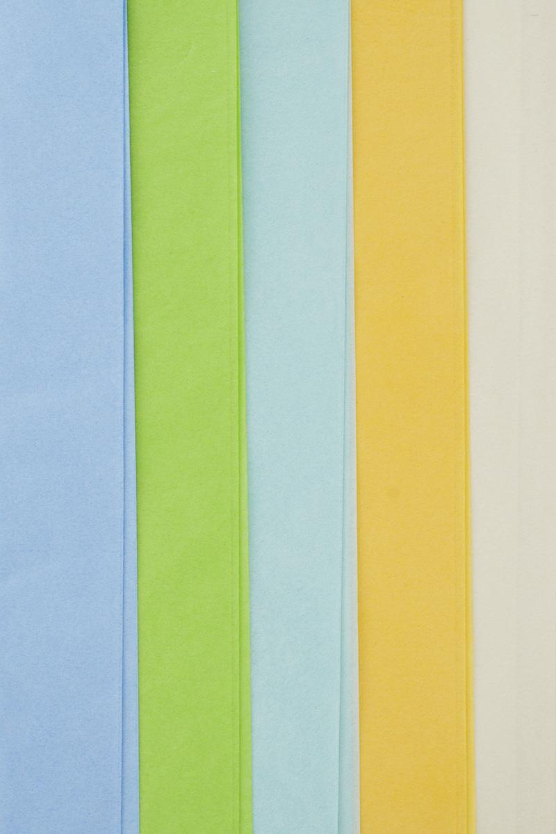 Набор бумаги тишью Hobby and You Полевые цветы, 50 х 70 см, 5 листов583476Бумага тишью Hobby and You Полевые цветы - это тонкая, нежная и привлекательная декоративная бумага. Она производится из беленой сульфатной целлюлозы, получаемой из древесины деревьев хвойных пород. Бумага тишью Hobby and You Полевые цветы идеально подходит для стильного оформления подарков и для создания помпонов, цветов, гирлянд и другого декора. Такой упаковочный элемент прекрасно дополнит любую упаковку и сделает ее яркой и праздничной. Размер бумаги тишью: 50 х 70 см.