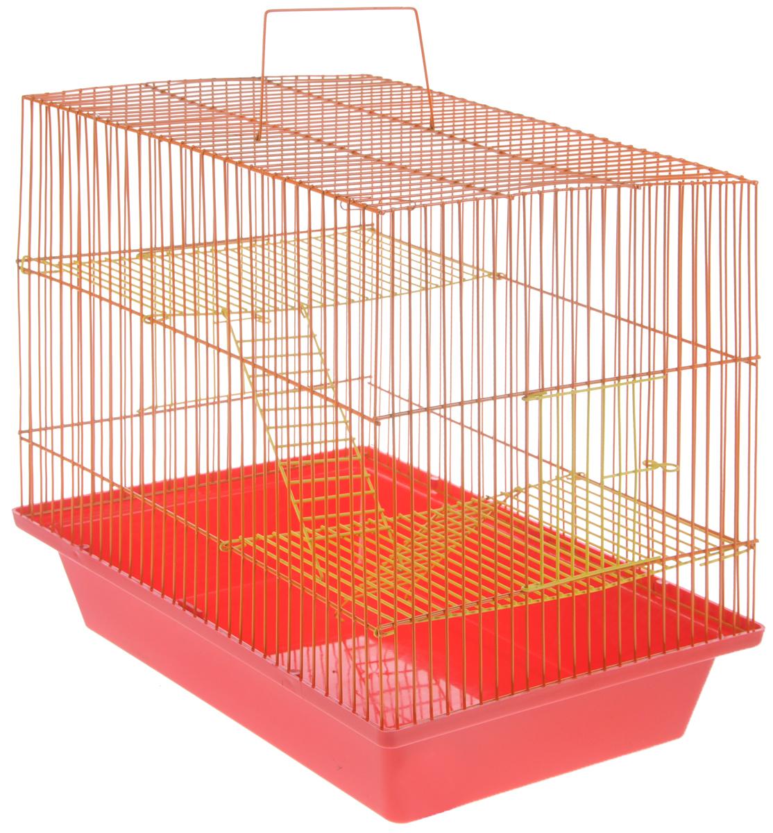 Клетка для грызунов ЗооМарк Гризли, 3-этажная, цвет: красный поддон, оранжевый решетка, желтые этажи, 41 х 30 х 36 см. 230ж0120710Клетка ЗооМарк Гризли, выполненная из полипропилена и металла, подходит для мелких грызунов. Изделие трехэтажное. Клетка имеет яркий поддон, удобна в использовании и легко чистится. Сверху имеется ручка для переноски.Такая клетка станет уединенным личным пространством и уютным домиком для маленького грызуна.