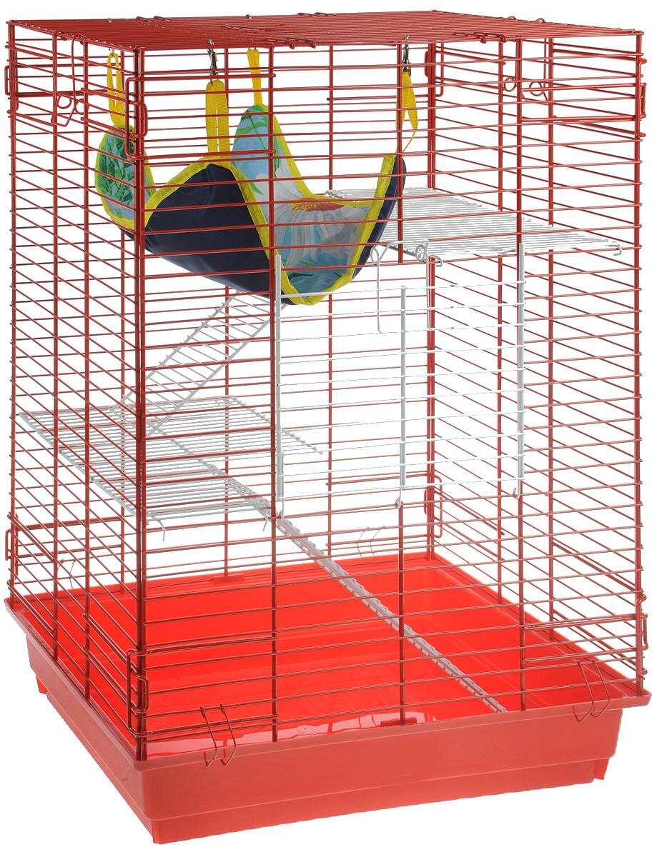 Клетка для шиншилл и хорьков ЗооМарк, цвет: красный поддон, красная решетка, 59 х 41 х 79 см. 725жк725жкКККлетка ЗооМарк, выполненная из полипропилена и металла, подходит для шиншилл и хорьков. Большая клетка оборудована длинными лестницами и гамаком. Изделие имеет яркий поддон, удобно в использовании и легко чистится. Сверху имеется ручка для переноски. Такая клетка станет уединенным личным пространством и уютным домиком для грызуна.
