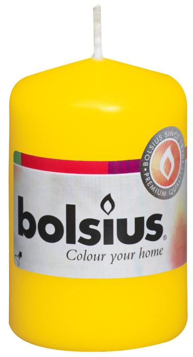 Свеча Bolsius, цвет: желтый, высота 8 см103613200111Свеча Bolsius выполнена из парафина в классическом стиле. Ее можно поставить в любое место и она станет ярким украшением интерьера. Свеча Bolsius создаст незабываемую атмосферу, будь то торжество, романтический вечер или будничный день.